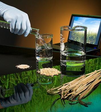 метиловый спирт используют для производства формальдегидов и лавсана